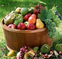 как сохранить фрукты
