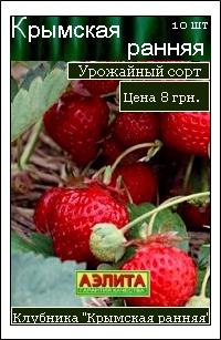 сорт полуниці Кримська рання