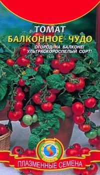 сорт томатів Балконе диво