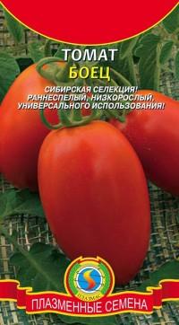томат сорта Боец