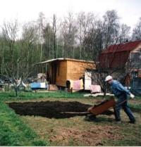 Удобрение для деревьев