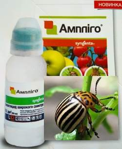 Препарат Амплиго против колороадского жука.
