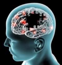 Профілактика нейродегенеративних захворювань