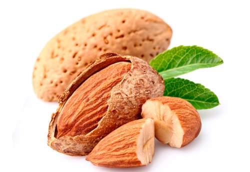 Орехи миндаль - польза здоровью