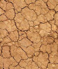 проблемная почва