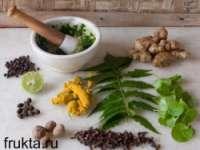 как заготавливать лечебные травы